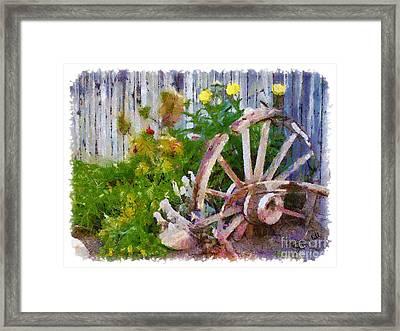 Garden Whhel Framed Print