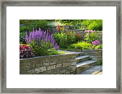 Garden With Stone Landscaping Framed Print by Elena Elisseeva