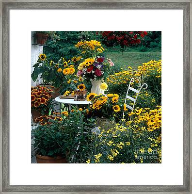 Garden With Table And Chair Framed Print