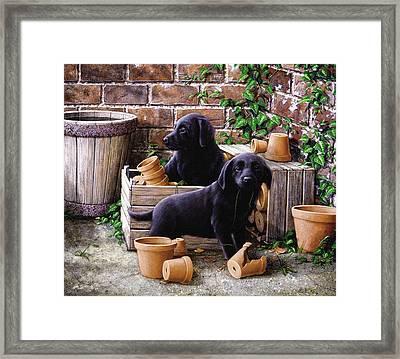 Gardeners Corner Framed Print by John Silver