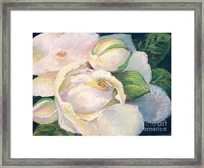 Gardenia 2 Framed Print