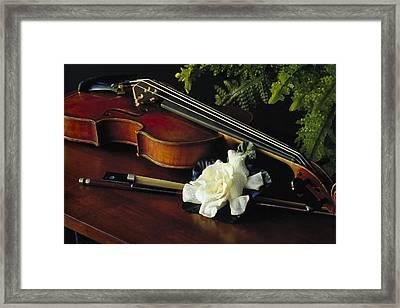 Gardenia IIi Framed Print