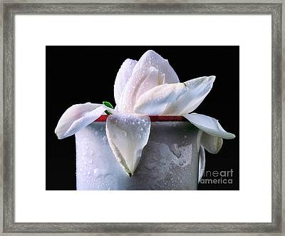 Framed Print featuring the photograph Gardenia In Coffee Cup by Silvia Ganora