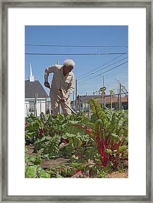 Gardening Framed Print by Jim West
