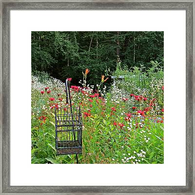 Gardens 107 Framed Print by Patsy Pratt