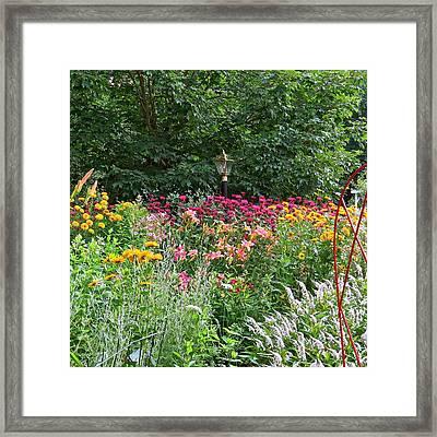 Gardens 109 Framed Print by Patsy Pratt