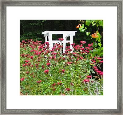 Gardens 114 Framed Print by Patsy Pratt