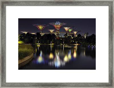 Gardens By The Bay Supertree Grove Framed Print by David Gn