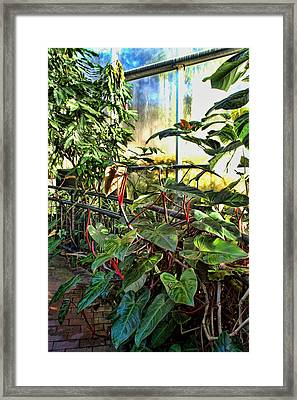 Gardens Framed Print