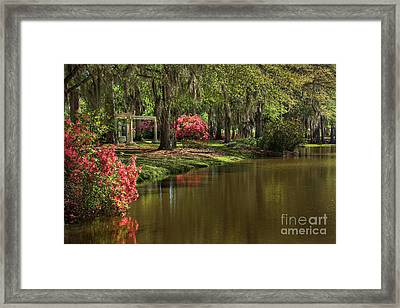 Gardens Of The South Framed Print