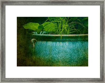 Gardenscape Framed Print by Amy Weiss