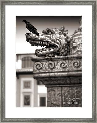 Gargoyle And Pidgeon - Sepia Framed Print by Gregory Dyer