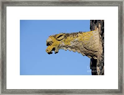 Gargoyle Framed Print by Bernard Jaubert