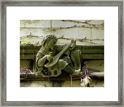 Gargoyle With Grape Vines University Of Chicago October 2009 Framed Print by Joseph Duba