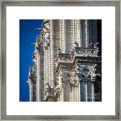 Gargoyles Framed Print