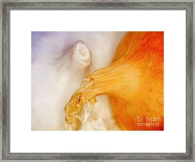Garlic And Onion Framed Print