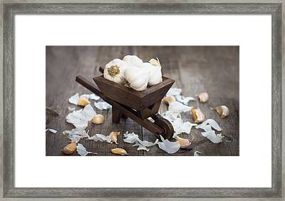 Garlic Cloves In A Miniature Wheelbarrow Framed Print