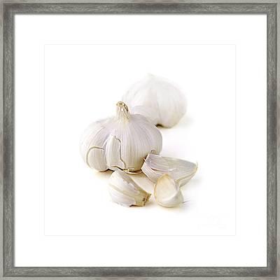 Garlic Framed Print by Elena Elisseeva