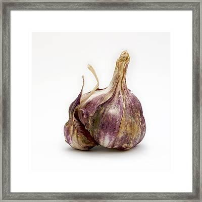 Garlic Glove Framed Print