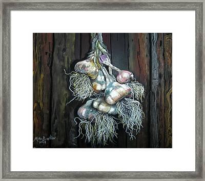 Garlic Hanging To Dry Framed Print