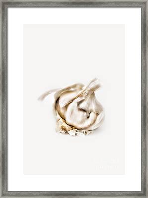 Garlic Framed Print