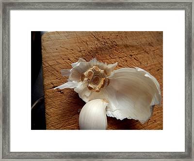 Garlic Is Life Framed Print by Aliceann Carlton