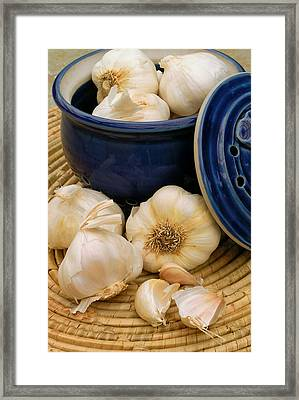 Garlic Framed Print by James Temple