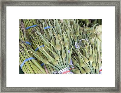 Garlic Spears And Asparagus Bundles Closeup Framed Print by JPLDesigns