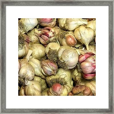 Garlic Framed Print by Tom Giske
