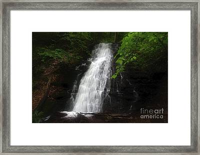 Framed Print featuring the photograph Garvey Spring Falls by Debra Fedchin
