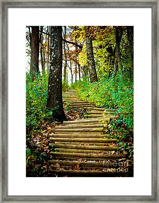 Framed Print featuring the photograph Garvin Heights Stairway by Kari Yearous