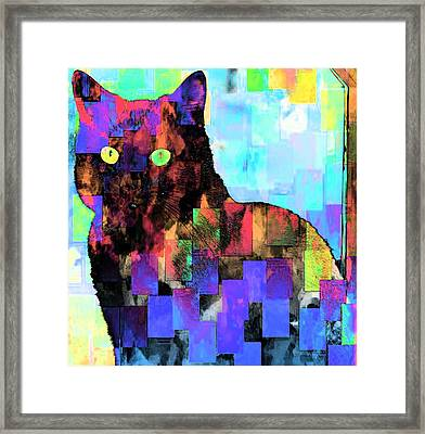 Gatdritos Framed Print