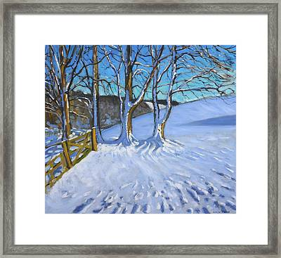 Gate And Trees Winter Dam Lane Derbyshire Framed Print by Andrew Macara