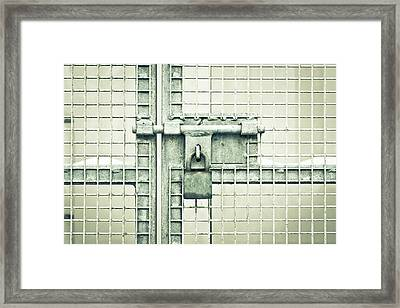 Gate Padlock Framed Print by Tom Gowanlock