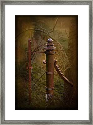 Gate Post Framed Print by Liz  Alderdice