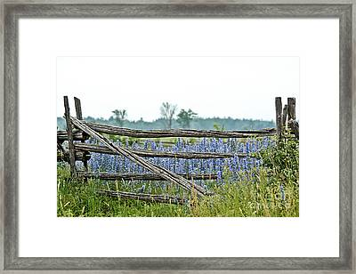Gate To Blue Framed Print by Cheryl Baxter