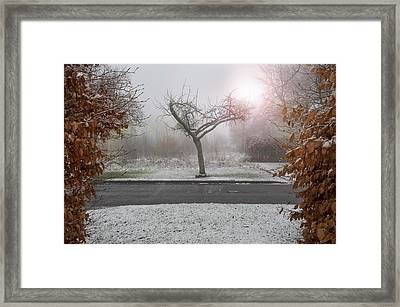 Gate To The Heart Of Winter Framed Print by Svetlana Sewell