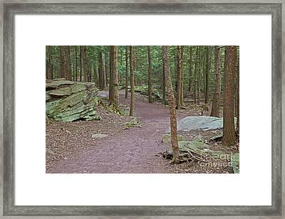 Gateway To Adventure Framed Print by John Stephens