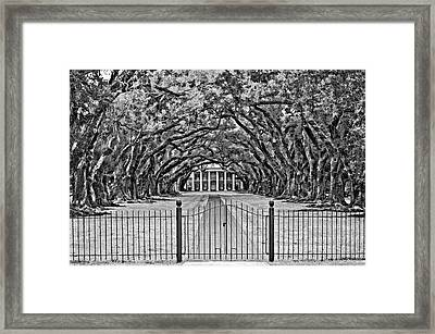 Gateway To The Old South Bw Framed Print by Steve Harrington