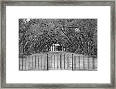Gateway To The Old South Monochrome Framed Print by Steve Harrington