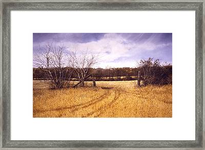 Gateway Framed Print by Tom Wooldridge