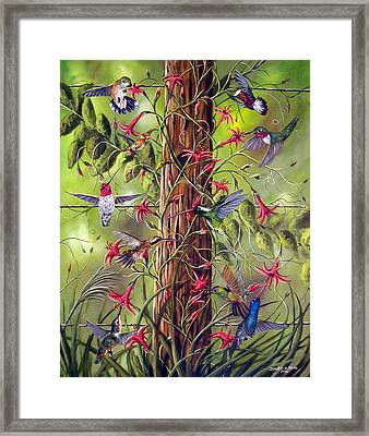 Gathering At The Fencepost Framed Print by David G Paul