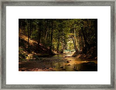 Framed Print featuring the photograph Gathering At The Stream by Haren Images- Kriss Haren