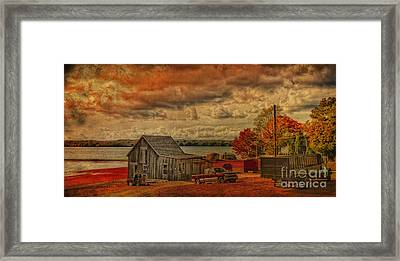Framed Print featuring the photograph Gathering Cranberries by Gina Cormier