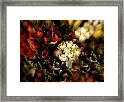 Gathering Of Tulips Framed Print by Jessica Jenney