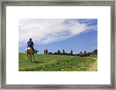 Gathering The Herd. Framed Print
