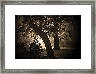 Gathering Thoughts Framed Print