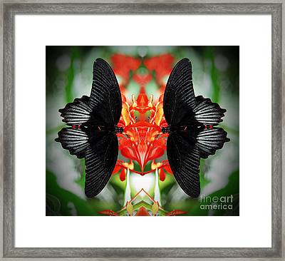 Gathering Time Framed Print by Inspired Nature Photography Fine Art Photography