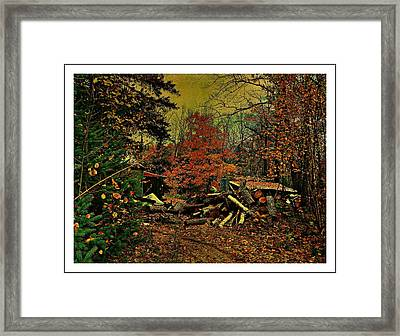 Gathering Wood For Winter  Framed Print by Dianne  Lacourciere