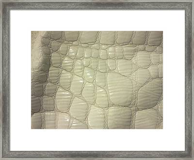 Gator White Framed Print by Ismael Lopez